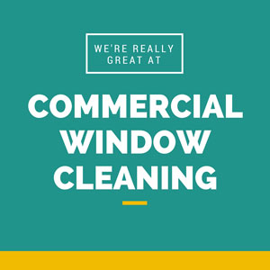 Commercial window cleaning in Ashburn VA
