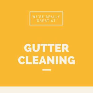 Gutter-Cleaning-in-Easton-MD