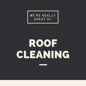 Roof-Cleaning-in-Easton