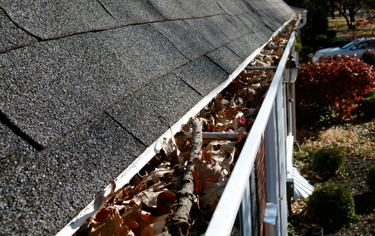 Award-winning-gutter-cleaning-in-Fayetteville-AR