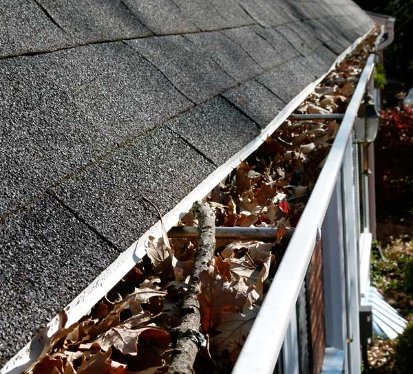 Debris-in-your-gutters-can-cause-serious-problems