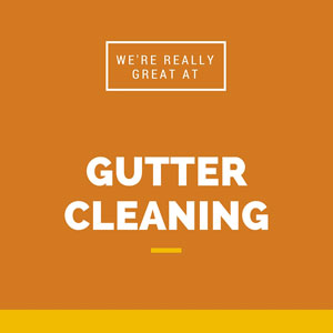 Gutter cleaning in Ashburn VA