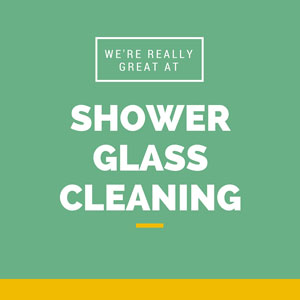 Shower glass cleaning in Ashburn VA